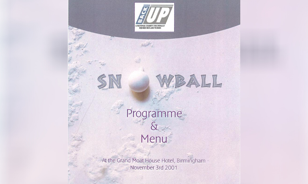 the 2001 Back Up Ball programme